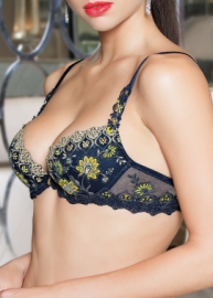 Emaux Graphic lingerie Lise Charmel